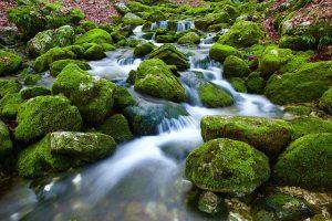 kaskady ogrodowe z kamienia